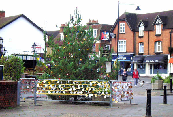 A Christmas tree with lights in a village centre. Small cards attached to a barrier around it.